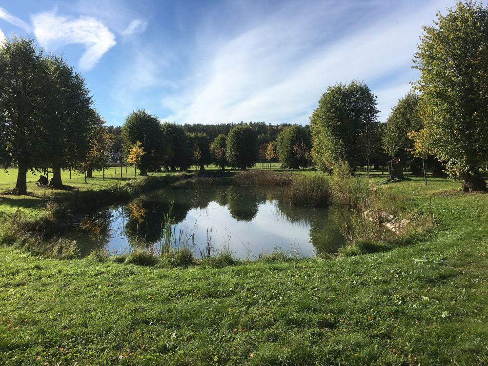 Damm i Stora Wäsby slottspark. Fotograf; Ingvar Åslund